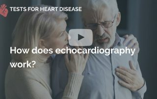 How does echocardiography work many beats london